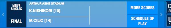 Cilic & Nishikori gewinnen bei den US Open 2014